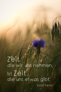 Foto: Anett Petrich